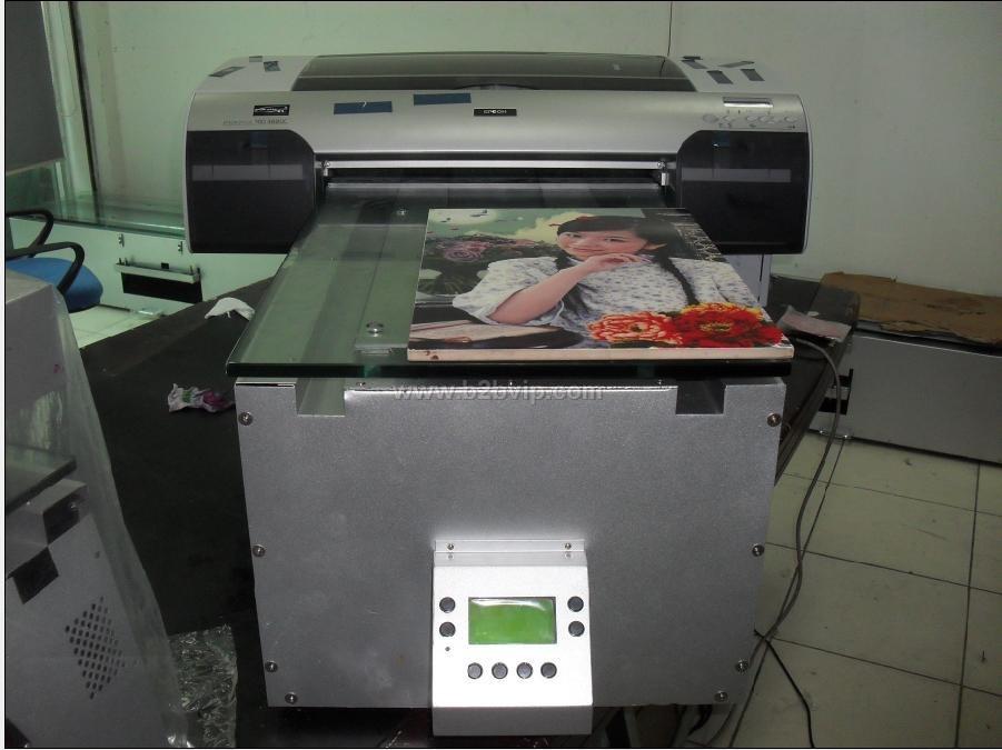金属条工艺品_植物编织工艺品大量优惠供应干花工艺品棉